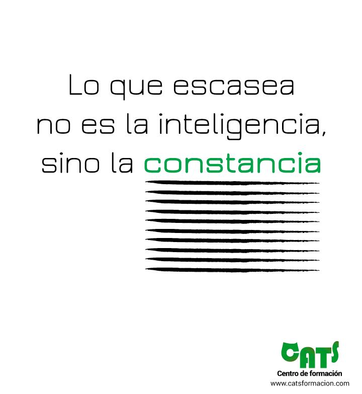 lo que escasea no es la inteligencia sino la constancia